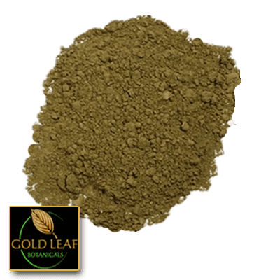 Organic Green Ketapang Kratom powder sold by Gold Leaf Botanicals.